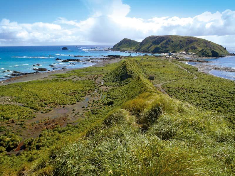 North of Macquarie Island.