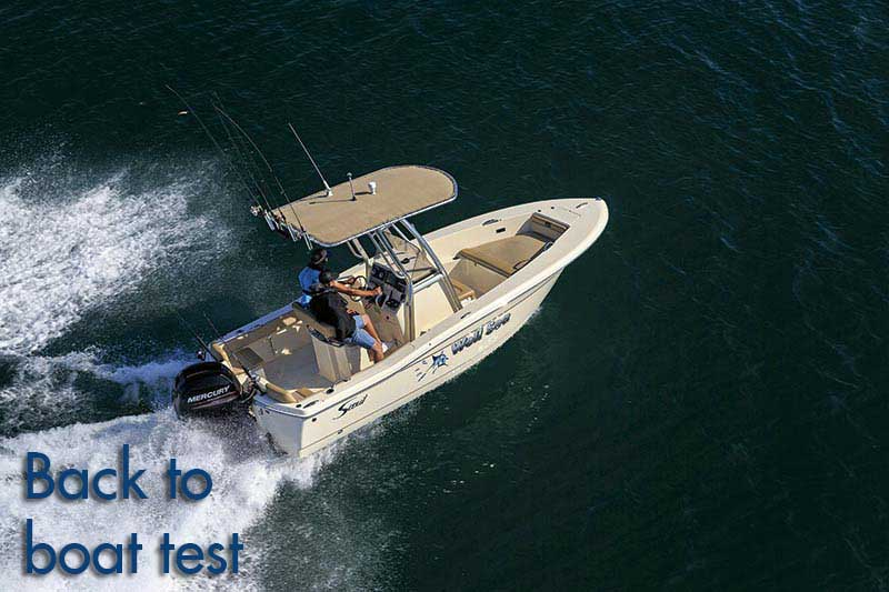Scout 195 Sportfish review