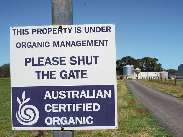 Rob Cook Profile _Australian Certified Organic Beef _3381
