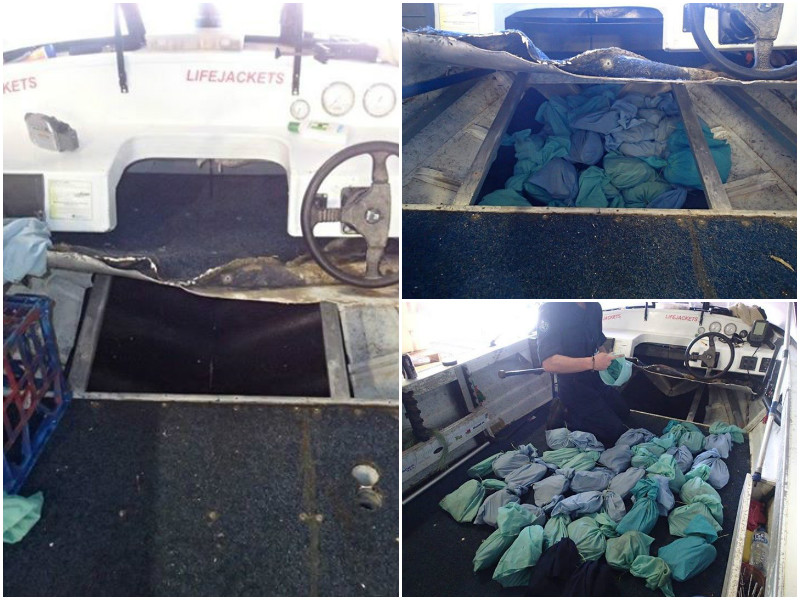 Illegal crabs seized by Qld Fisheries