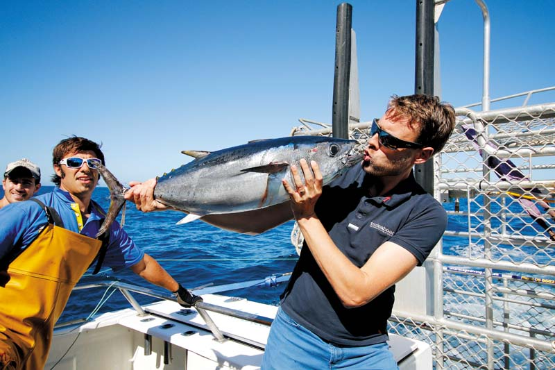 Fishing tuna in South Australia