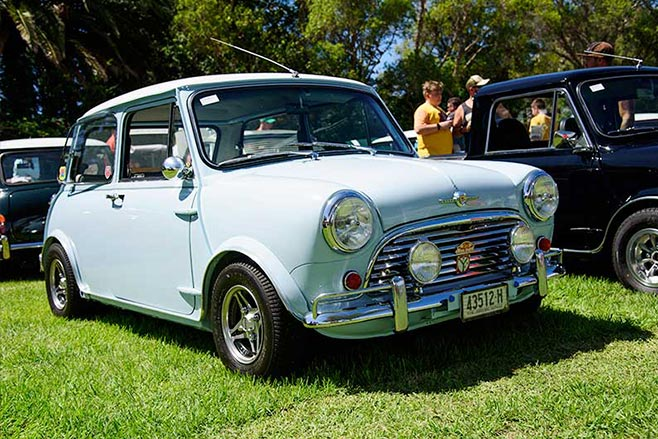 Minis -in -the -Gong -67-658