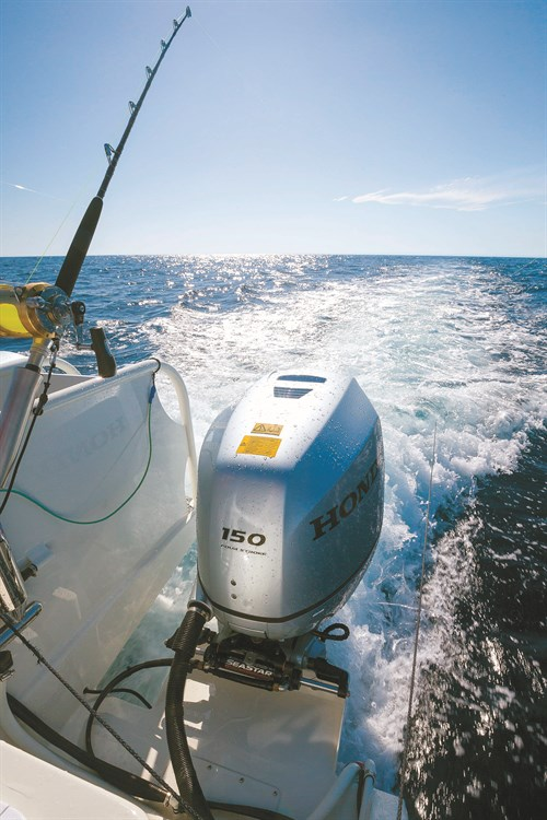 Honda BF150 outboard on Sailfish powercat