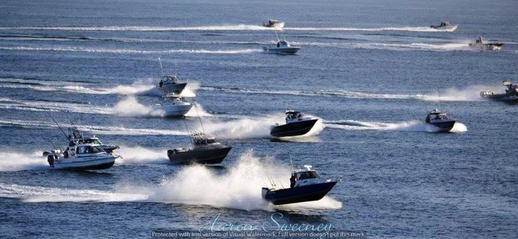 Boat Race To The Rock in Tasmania