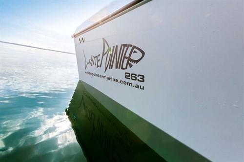 White Pointer Marine Boats decal logo