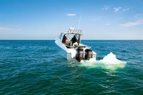 White Pointer 263 Hardtop with twin 250hp Suzuki outboards