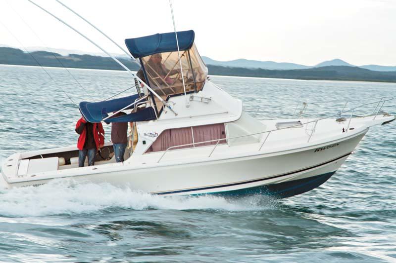 Caribbean 26