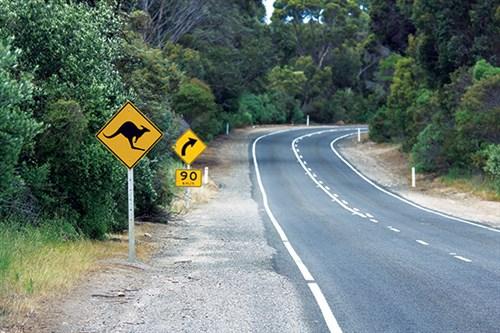 Blog -road -sign