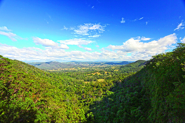 Sunshine Coast Hinterland Qld 5