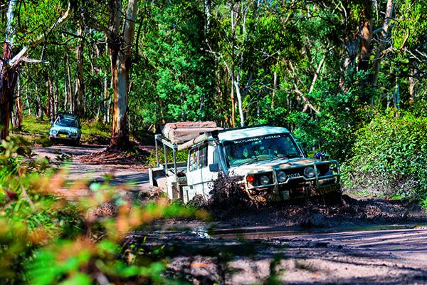 Gardens Of Stone National Park NSW 1