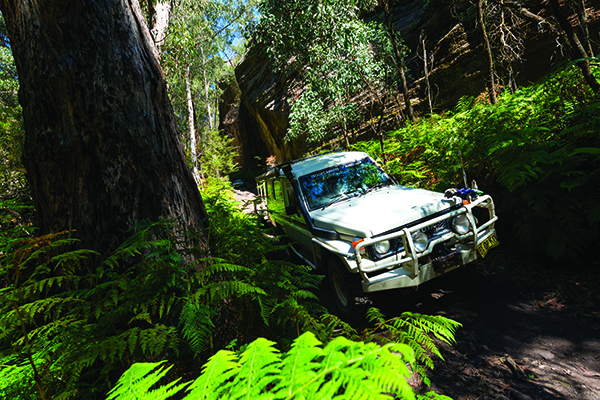 Gardens Of Stone National Park NSW 4