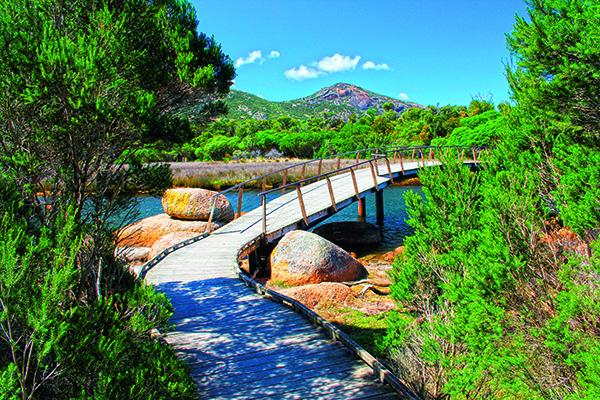 Australias Best Day Walks 2
