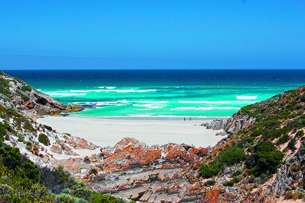 Australias Best Day Walks 4
