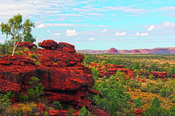 Australias Best Day Walks 5