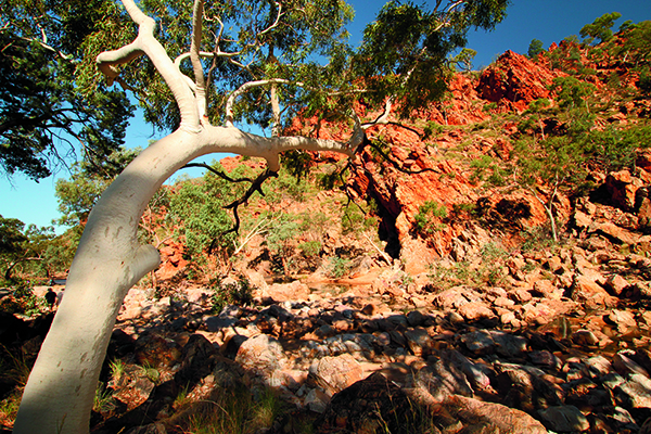 West Mac Donnell Ranges NT 2