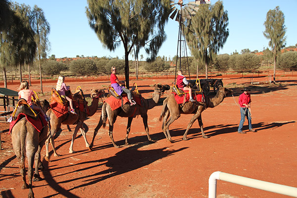 Touring Central Australia 4