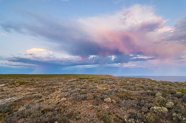Nullabor National Park 4