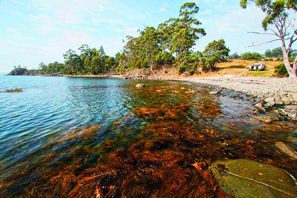 Far South Tasmania 4