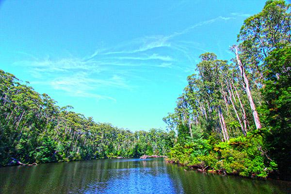 Arthur River Tas 3