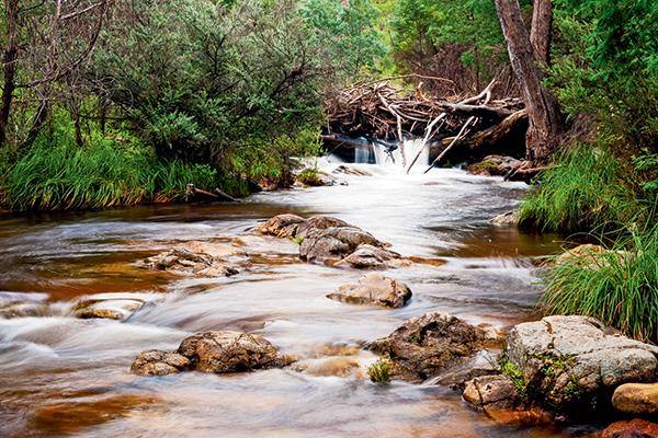 Pinch -River -Camp