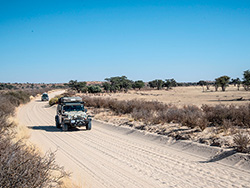 Roothys -African -Adventure
