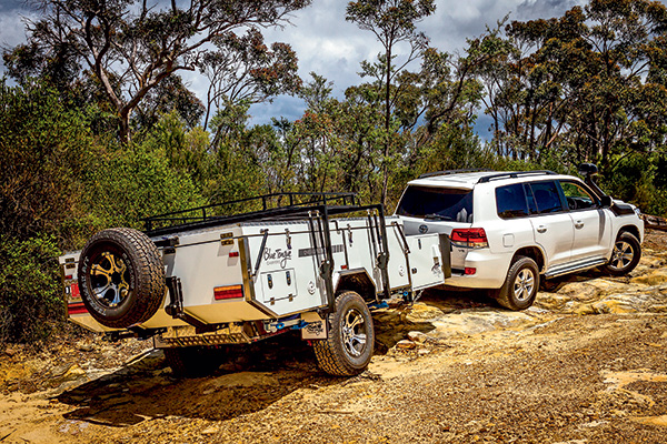 LEAD-PIC-Blue -Tongue -Overland -XD