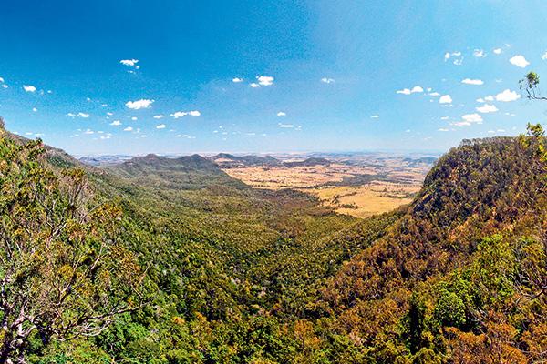 Bunya -Mountains -4