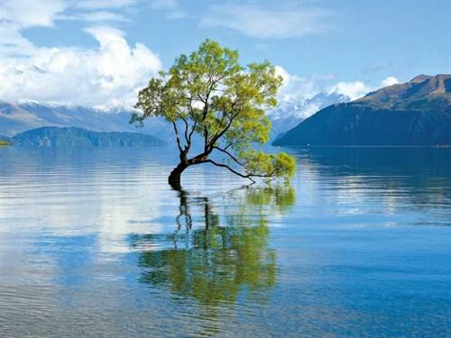 Lakes -5