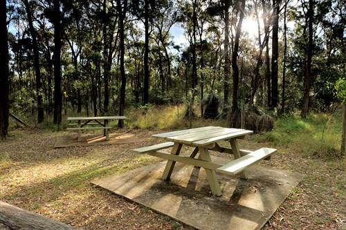 Smoking Exclusion Zones For Qld Parks