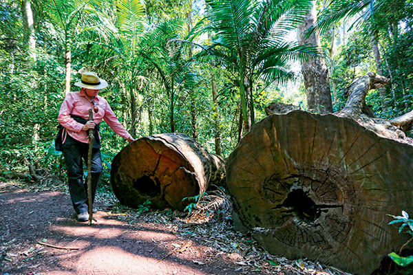 Southern -Inland -Parks -Qld -2