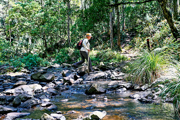 A-woman -crossing -over -Dalrymple -Creek