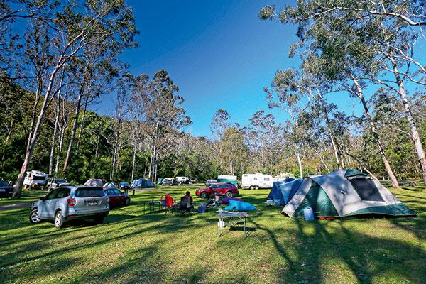 Manna -Gum -camping -area