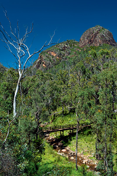 Warrumbungle -National -Park -6