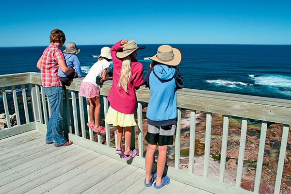 Children -watching -sea -lions -at -Point -Labatt -viewing -platform