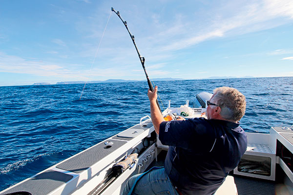 John -Bear -Willis -fishing -for -the -Broadbill -Swordfish