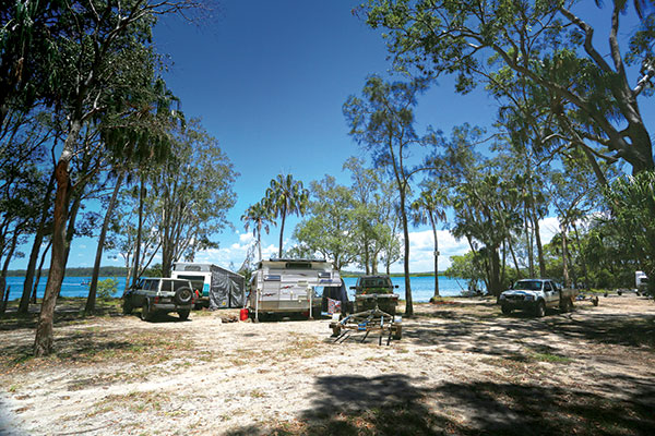 Camping -on -the -banks -of -Kauri -Creek ,-Tuan -State -Forest
