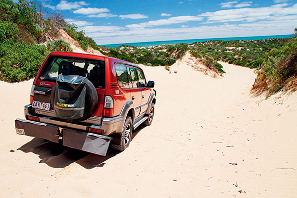 4WD-to -the -Ocean -beach -at -Coorong -National -Park