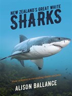New -Zealand 's -Great -White -Sharks