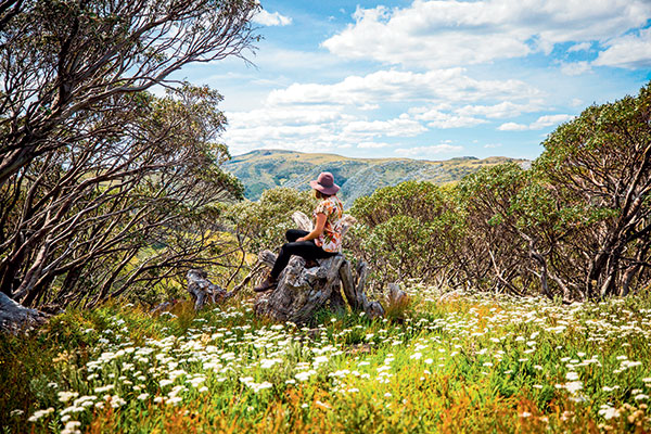 Emma -is -looking -at -the -High -Country -VIctoria -mountains