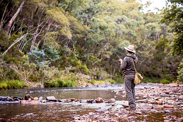 A-man -is -fishing -in -High -Country -Victoria