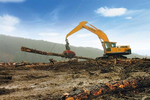 Forestry -industry