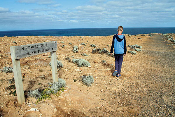 Petrified -Forest -Blowholes -Lookout -sign -VIC
