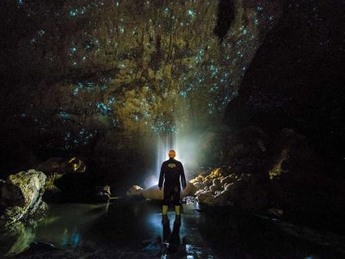 Waitomo -Caves -NZ-3