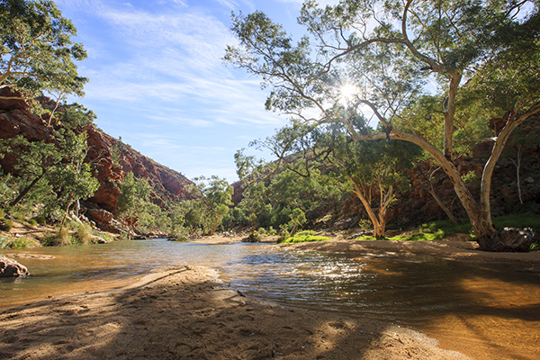 Family Touring Itineraries West Mac Donnell Ranges 4