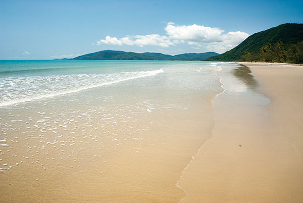 Myall -Beach -in -Cape -Tribulation