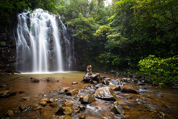 Top Family Touring Itineraries Atherton Tablelands 3