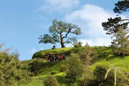 Famous -oak -tree