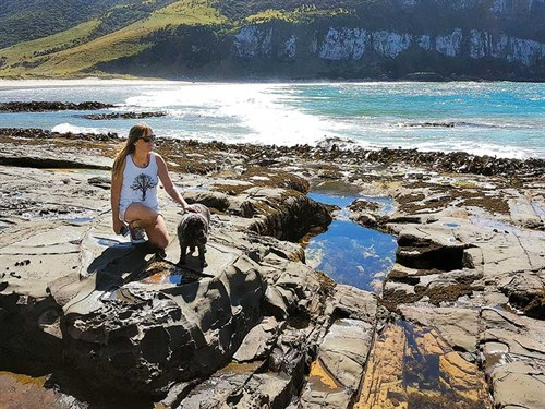 The -Catlins -is -a -brilliant ,-dog -friendly -place