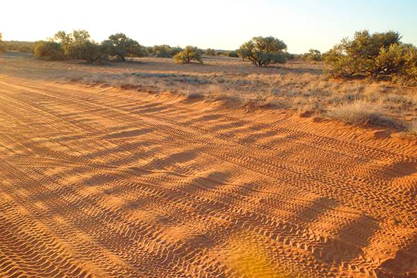 Corrugations -dusty -road -in -the -outback -Australia