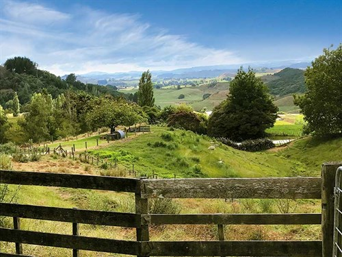 The -mighty -King -Country ,-from -Roselands -Waitomo